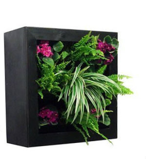 50110101 Vertical Wall Garden Planter- Square Frame
